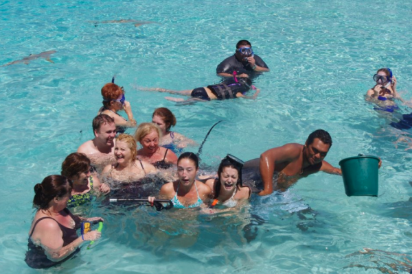 "That's me in the middle, looking terrified. By ""conquered my fear of sharks,"" I just mean I cried like a baby while sharks swam around me. There's also a stingray on my back, for the record."